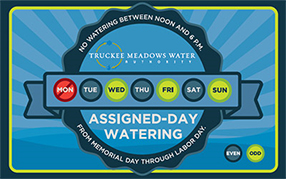 Assigned-Day watering schedule